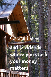 Investing to Thrive Capital Gains and Dividends